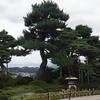 【金沢観光】兼六園~金沢城公園周辺をのんびりと