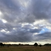 1月31日の雲&今日の独り言