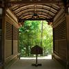 日本最古の神社、奈良県石上神宮に行って来ました【関西御朱印帳の旅】