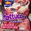 81日目 【新発売】フェットチーネグミ ミックスフルーツソーダ味