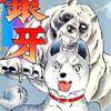 打倒!赤カブト!『銀牙 -流れ星 銀-』【ジャンプ漫画神拳!!!】