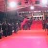 世界四大国際映画祭って何?