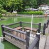 鯉が池(山形県鶴岡)