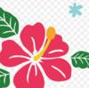 西門大通りで「ハワイアンな日」を!9月5日(土)開催!