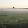 幻想的な霧の風景を取ろうと思ったら・・・