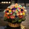 ガーベラ100本の花束を持参して、配達してくれという訳の分からない要求を呑んでみるとそれはサプライズだった
