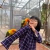 鳥好きなら今すぐ静岡へ!鳥たちとふれあえる「富士花鳥園」に行ってきた。