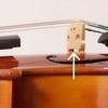分数楽器のクリーニング1
