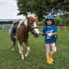 小貝川ポニー牧場で個人レッスンを受けてきた。