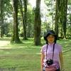 コスタリカ 背景はポロの林