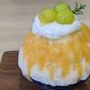 かき氷SANGO(所沢市)のふわふわかき氷メロンミルクに感動 エスプーマって?