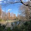 東京散策  ー井の頭公園・三鷹・武蔵境・高円寺ー