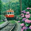 箱根登山鉄道の赤い電車 全線開通