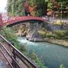 【日光街道歩き旅 最終日】紅葉と日光杉並木、そして終点へ