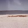 毎日更新 1983年 バックトゥザ 昭和58年7月27日 オーストラリア一周 バイク旅 33日目 22歳 湾岸美浜 感動夕陽 ヤマハXS250  ワーキングホリデー ワーホリ  タイムスリップブログ シンクロ 終活