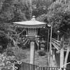 上野寛永寺清水堂