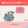 cow pie 【直訳では分からない英語フレーズ#33】