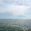 majokoと魔法の旅ブログ★カンボジアの旅 Chapter:6 majokoと水没危機一髪!トンレサップ湖水上集落ボートツアー(後編) -シェムリアップ1日目
