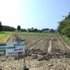 学外畑の畝整理&ひまわりの種まき