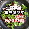 「生野菜や果物は体を冷やす」は嘘!完壁な理由を説明します!