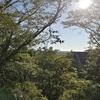 【旅行】都会の喧騒から離れて〜茨城最大級のキャンプ場へ行ってきました〜