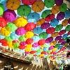 【行って損なし】ポルトガル・アゲダの傘祭はやっぱり可愛くて映える