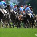 競馬とPython