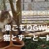 巣ごもりGWは猫とずーと一緒