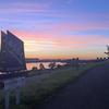 北海道マラソン1週前。15kmビルドアップ走@荒川河川敷