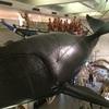 太地にのこる 捕鯨の足跡。