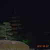瑠璃光寺の夜桜