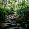 熊野古道と郷土料理バイキング