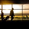 【必読!!】 空港で生き残る為最も役に立つ10のヒント
