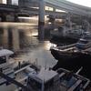 ちっ!外道か…☆彡横浜D堤