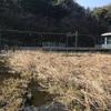 池子大池と七つ頭の大蛇伝説(逗子市)
