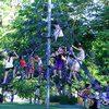Thiết kế khu vui chơi đu dây ngộ nghĩnh dành cho trẻ