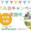 Seedling English 春の入会キャンペーン始まります!!