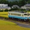 第967列車 「 国道俯瞰で四国色キハ40形を狙う 2019・お盆 牟岐線紀行その3 」