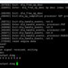 NVDLAの内部構成調査(6. Caffeのモデルを使ってNVDLAでMNISTを動かす)