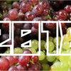 【2018年】「葡萄(ぶどう)収穫量」ランキング
