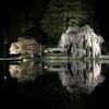 岐阜県観光大使の桜情報~飛騨イチ美しい鏡張り夜桜~