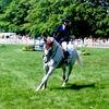 【重要】馬に優しい駈歩発進の方法を解説