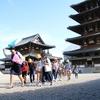 小学生以来の奈良