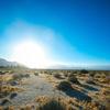 太陽光発電用地の農地転用許可&銀行融資チャレンジ