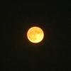 子を塾へ送った後に一人(独り)で見る名月についてのetc。