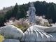 桜旺盛な高取山登頂 (壺阪寺~五百羅漢)