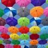 【期間限定】梅雨時のモヤモヤ&まったり気分のリフレッシュセラピーをお届けします