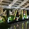 【LCCの深夜便で台北】深夜の桃園空港から台北への移動や快適な過ごし方
