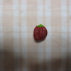 【家庭菜園】ピーマン収穫しました。