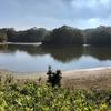 谷山池(大阪府和泉)